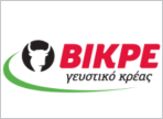 λογότυπο της bikrekreatoskeuasmata