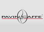 λογότυπο της pavin