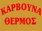λογότυπο της thermoskarvouna