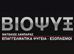 λογότυπο της viopsix