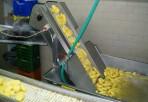 Tsioutsia Aggeliki potatoland apofleiomenes patates2